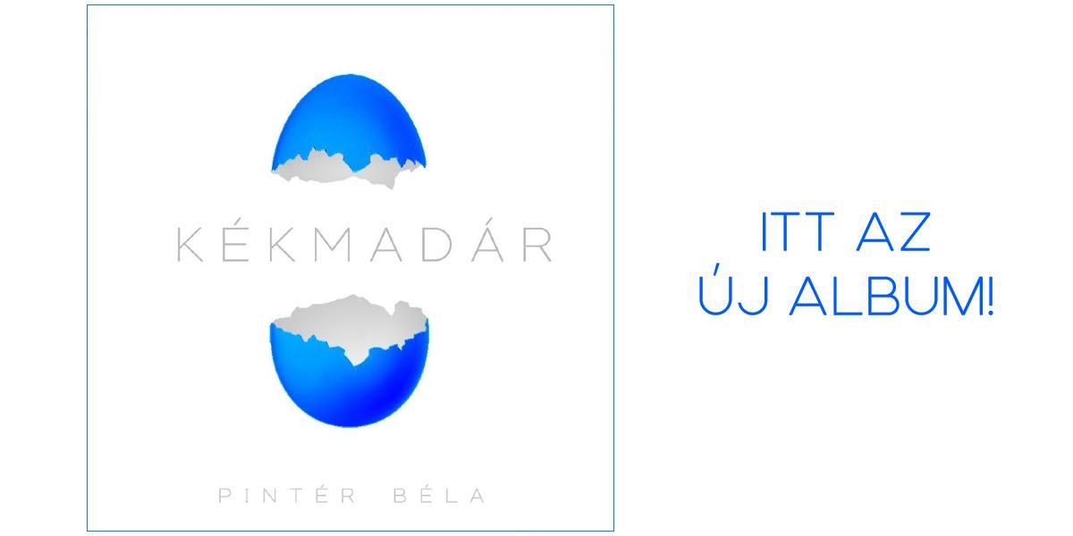5kékmadár-banner211007b