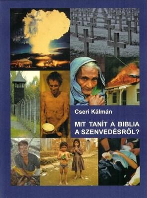 Mit tanít a Biblia a szenvedésről? (papír)