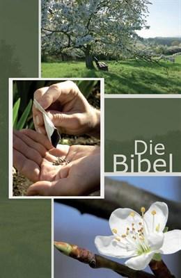 Német Biblia Elberfelder tavasz (Keménytáblás)