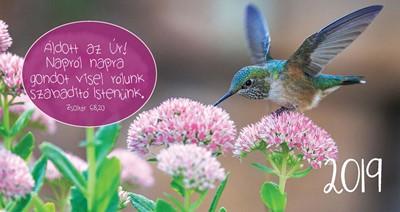 Zsebnaptár 2019 Kolibri (Papír)