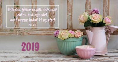 Zsebnaptár 2019 Pasztell rózsa (Papír)