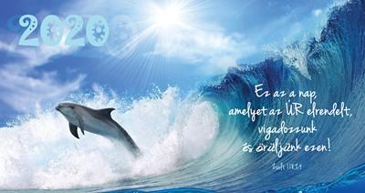 Zsebnaptár 2020 delfin (Papír)