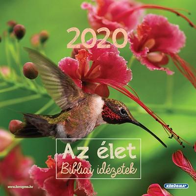 Négyzetes falinaptár 2020 Az élet (Spirálozott)