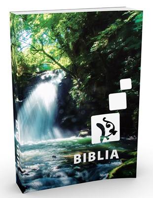 Biblia revideált Károli közép kartonált (Papír)