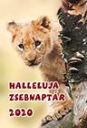 Zsebnaptár 2020 kis oroszlán (Füzetkapcsolt)