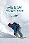 Zsebnaptár 2020 snowboard (Füzetkapcsolt)
