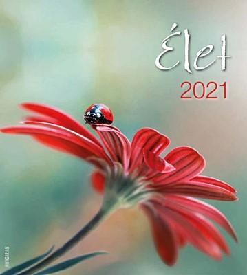 Élet naptár 2021 (Spirálozott)