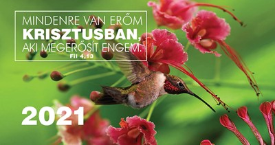 Zsebnaptár 2021 kolibri (Papír)