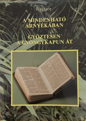 A Mindenható árnyékában - Győztesen a gyöngykapun át (Papír) [Antikvár könyv]