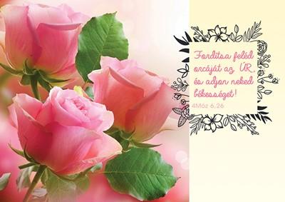 Képeslap-csomag Rózsaszín rózsák