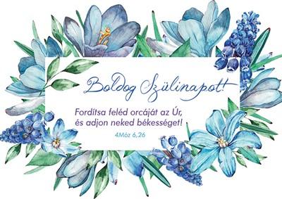 Születésnapos képeslap-csomag Kék akvarell virágok