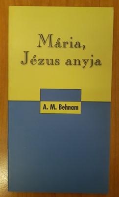 Mária, Jézus anyja (Papír) [Antikvár könyv]