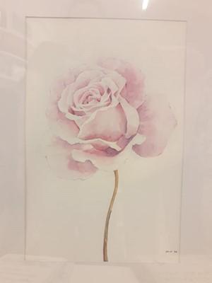 Akvarell festmény Pasztell rózsa (Keretezett)