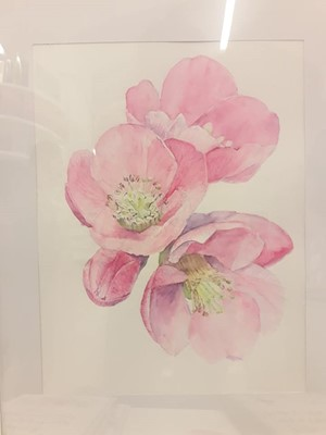 Akvarell festmény Rózsaszín virágok (Keretezett)