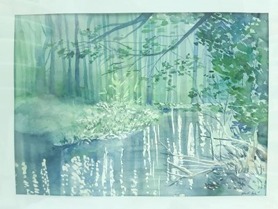 Akvarell festmény Fák a folyóparton (Keretezett)