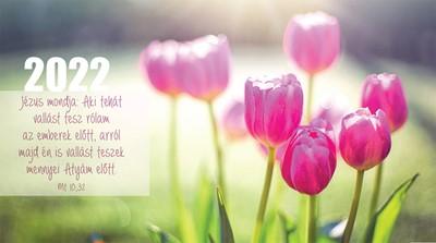 Zsebnaptár 2022 tulipánok (Papír)