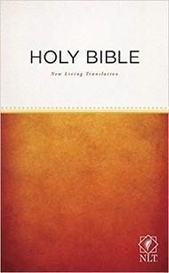 Angol Biblia New Living Translation Outreach Edition