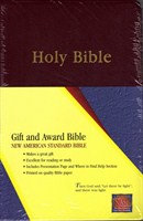 Angol Biblia New American Standard Bible Gift and Award - Burgundy