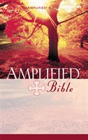 Angol Biblia Amplified Paperback