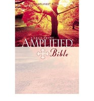 Angol Biblia Amplified Bible Large Print