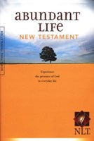 Angol Újszövetség New Living Translation Abundant Life (Papír)
