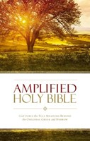 Angol Biblia Amplified Holy Bible PB (Papír)