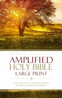 Angol Biblia Amplified Bible Large Print Hard Cover