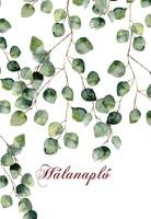 Hálanapló (zöld levelek)