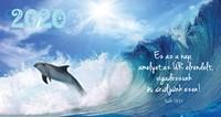 Zsebnaptár 2020 delfin