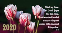 Zsebnaptár 2020 tulipán