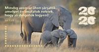 Zsebnaptár 2020 elefánt