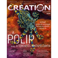 Creation Magazin 2020