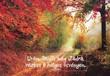 Képeslap-csomag Őszi erdő